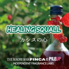 HEALING SQUALL